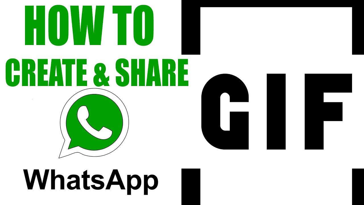 create-your-custom-gif-on-whatsapp-mplive